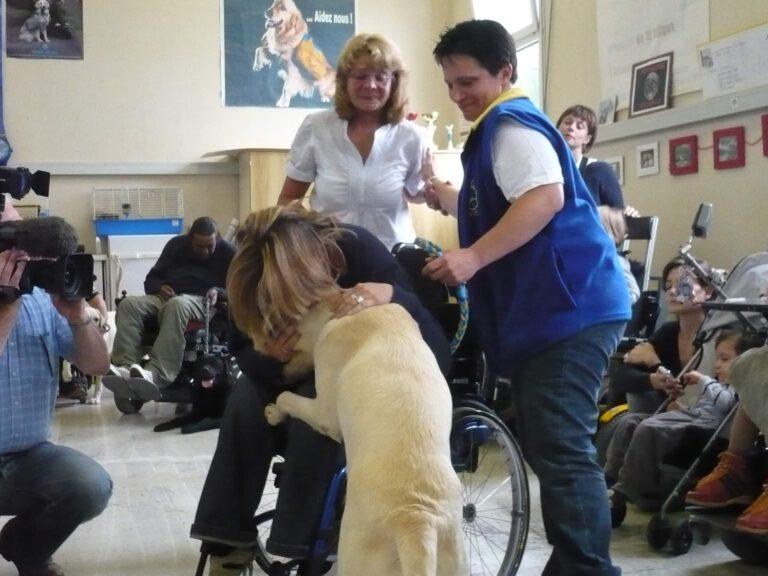 Das Photo zeigt eine Frau im Rollstuhl, die sich über einen blonden Labrador beugt und weint, weil sie ihren Assistenzhund gerade bekommt.